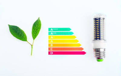 Der Energieverbrauchsausweis